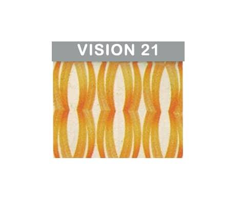 GENIUS VISION 21