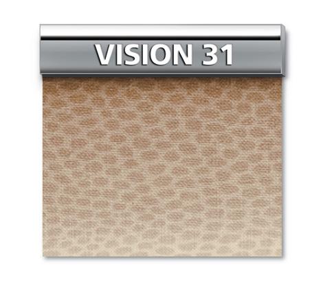 GENIUS VISION 31