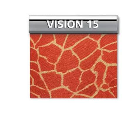 GENIUS VISION 15